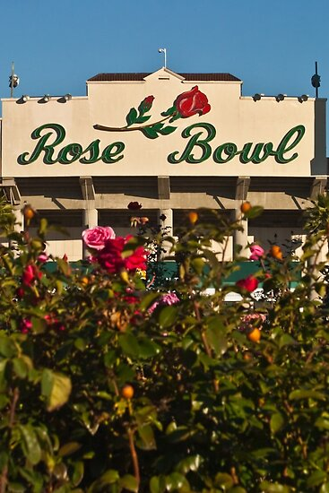 The Rose Bowl by Henry Plumley