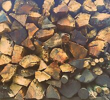 Woodpile by Kevin Poole