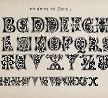 The Signist's Book of Modern Alphabets Freeman F Delamotte 1906 0119 Eleventh 11th Century Alphabet and Numerals by wetdryvac