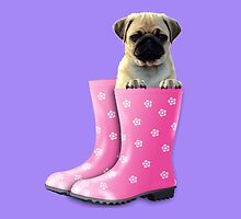 Pug In Boots by ImageMonkey