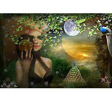 Hidden Garden Photographic Print