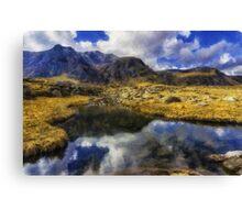 Stream Reflections Canvas Print