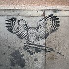 Street Owl by Steve Campbell