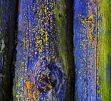 Old Wood Texture 03 by Voysla