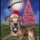 I Hear Santa Coming!!!! by Elizabeth Burton
