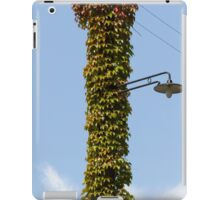 lamppost wrapped in ivy iPad Case/Skin