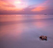 Starfish on a Caribbean beach by StuartStevenson