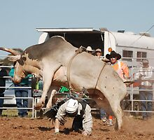 Rodeo Rider 3 by Kat36