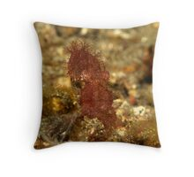 rare hairy octopus in Lembeh straits Throw Pillow