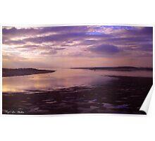 Magenta Sunsets Poster
