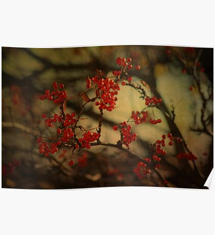 Autumnal Rowen Poster