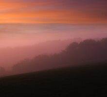 - Pre-dawn light over grazing meadows in Suffolk by Christopher Cullen