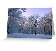 Friendly Light  Greeting Card