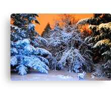 My Snowy Backyard in HDR Canvas Print