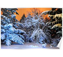 My Snowy Backyard in HDR Poster