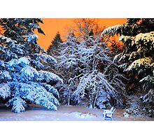 My Snowy Backyard in HDR Photographic Print
