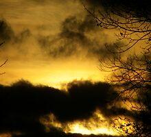 Before Sunset by MistyAdkins