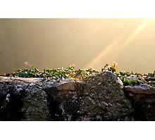 Sonnenstrahl auf der Mauer Photographic Print