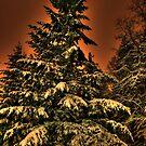 Eye of the snowstorm by skreklow