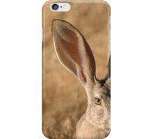 Beautiful Jackrabbit iPhone Case/Skin