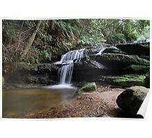 Leura Cascades 13-11-10 Poster