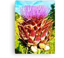 Psychedelic Vegetable Canvas Print