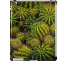 Cacti Cluster iPad Case/Skin