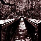 Suspension Bridge by BobJohnson
