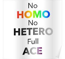 No Homo No Hetero Full Ace Poster