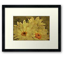 """""""I'll Give You a Daisy a Day Dear ...."""" Framed Print"""