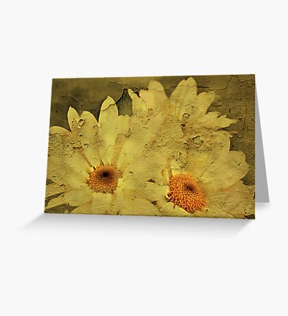 """I'll Give You a Daisy a Day Dear ...."" Greeting Card"