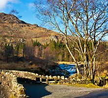 Birks Bridge over the River Duddon by Trevor Kersley