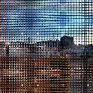DSC_9834 _2010-11-23 _MousePathv02 _GIMP by Juan Antonio Zamarripa