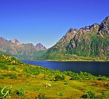The New Seven Wonders Of The World. Lofoten Islands . Anno Domini 2007 . Doctor Faustus. by © Andrzej Goszcz,M.D. Ph.D