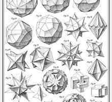 Max Bruckner 1906 polyhedra & icosahedron models by Gianni A. Sarcone