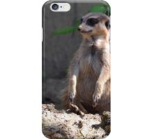 What was that? iPhone Case/Skin