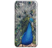 Peacock II iPhone Case/Skin
