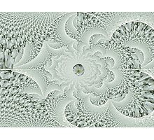 Flower Lace Photographic Print