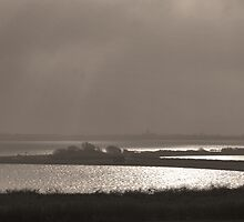 Light and fog at Lake Grevelingen by Adri  Padmos