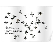 I command birds to fly above the earth... Poster