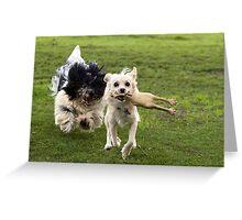 Billy ,Matzko& the rubber chicken Greeting Card