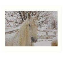 Snow Flakes on Knight Art Print