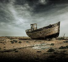 Dungeness Relic by Steve Payne
