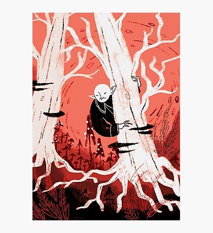 Forest Vampire Photographic Print