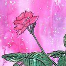 Pink Rose Bud by Alexandra Felgate