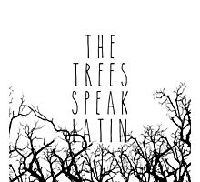 The trees speak latin Photographic Print
