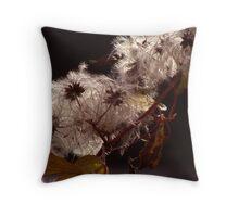 (Jan.) Wild Clematis Throw Pillow