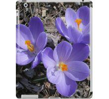 Springing Forth iPad Case/Skin