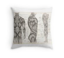 Human Anatomy 1 Throw Pillow