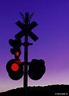 Railroad Crossing by Marcia Rubin